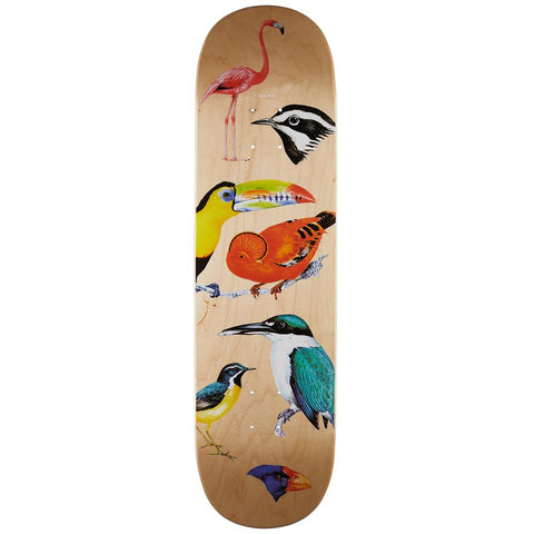 Quasi Skateboards, Birdhouse Three Natural Deck, Wood, Bottom View