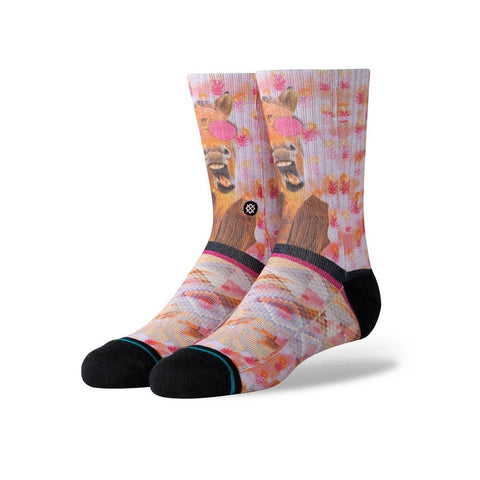 K526D19HHK.PNK, STANCE, HAYLEYS HORSE SOCKS, GIRLS CREW SOCKS, PINK