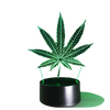 Image of WEED 3D ILLUSION LAMP