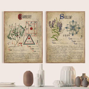 Witchcraft Book of Shadows Vintage Prints Herbal Grimoire BOS Sheets Posters Herbarium Wall Art Pictures Canvas Painting Decor