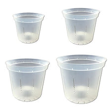 Slotted Clear Orchid Pots - Farm Nevada - Gardeners Start Here