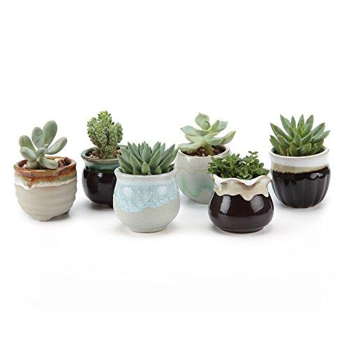 2.5 Inch Ceramic Flowing glaze Black&White Base Serial Set Sucuulent Plant Pot/Cactus Plant Pot Flower Pot/Container/Planter Package 1 Pack of 6 - Farm Nevada - Gardeners Start Here