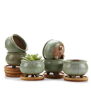 "3""Spring Serial NO.2 Tripod Sucuulent Cactus Plant Pots Flower Pots Planters Containers Window Boxes With Bamboo Tray Green Set of 6 - Farm Nevada - Gardeners Start Here"