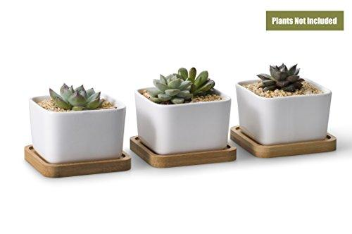 3.54 Inch White Ceramic Contemporary Square Design Succulent Plant Pot/ Cactus Plant Pot With Bamboo Tray - Pack of 3 - Farm Nevada - Gardeners Start Here