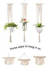 Plant Hanger Hanging Planter Wall Art - Farm Nevada - Gardeners Start Here