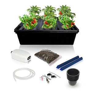 Hydroponics Growing System Kit - 2 Large Airstone, 6 Plant Sites (holes) Bucket with Air Pump - Best Indoor Herb Garden for Lettuce, Mint - Complete Hydroponic Setup Grow Fast at Home by SavvyGrow - Farm Nevada - Gardeners Start Here