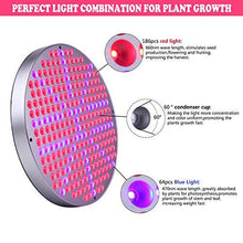 50W LED Plant Grow Lights - Farm Nevada - Gardeners Start Here
