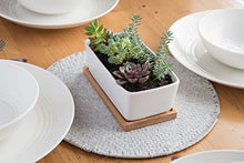 StarPack Premium Small White Ceramic Succulent Planter Pot with Bamboo Base - Farm Nevada - Gardeners Start Here