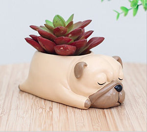 Youfui Cute Dog Flowerpot Resin Succulent Planter Desk Mini Ornament (Pug) - Farm Nevada - Gardeners Start Here