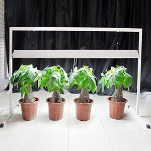 54W 4 Feet 2-Bulbs T5 Grow Light System with Stand Rack for Plant Growing, 6400K - Farm Nevada - Gardeners Start Here
