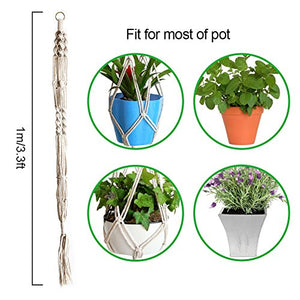 Plant Hanger Set of 4 - Farm Nevada - Gardeners Start Here