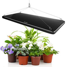 LED Grow Light Panel 45w - Farm Nevada - Gardeners Start Here