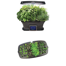 Gourmet Herb Seed Pod Kit/Seed Starting System - Farm Nevada - Home Garden Supplies