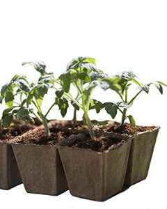 Growing starts here! Seed Starter Peat Pots Kit - Farm Nevada - Gardeners Start Here