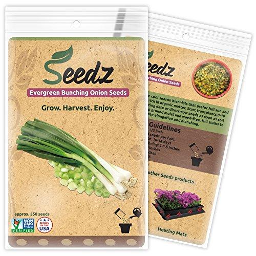 Organic Green Onion Seeds - Farm Nevada - Gardeners Start Here