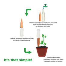 Plant Self Watering System - Farm Nevada - Gardeners Start Here