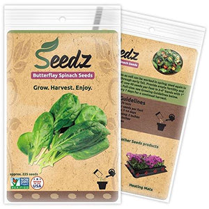 Spinach Seeds - Farm Nevada - Gardeners Start Here