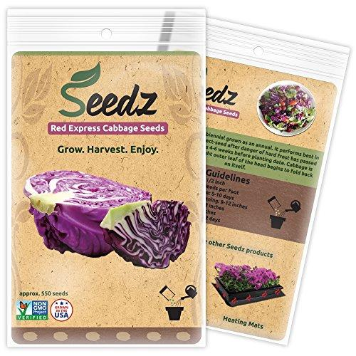 Red Cabbage Seeds - Farm Nevada - Gardeners Start Here