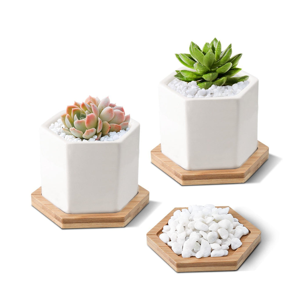3.35 Inch White Ceramic Succulent Planter with Hexagon Design - Farm Nevada - Gardeners Start Here