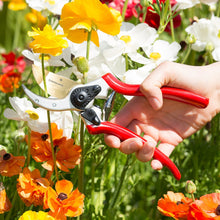 Titanium Pruning Shears - Farm Nevada - Gardeners Start Here