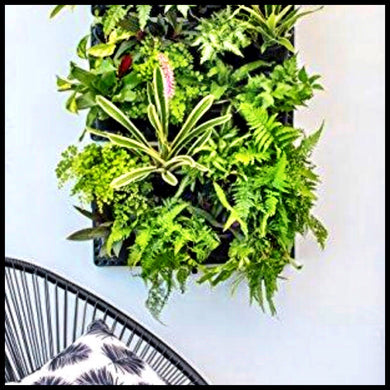 Expandable Green Wall w/ Built-in micro dripper - Farm Nevada - Gardeners Start Here
