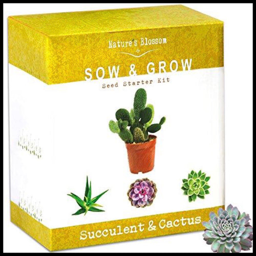 Succulent & Cactus Growing Kit - Farm Nevada - Gardeners Start Here