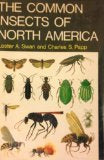 Common Insects of North America