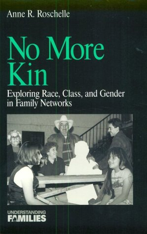 No More Kin: Exploring Race, Class, and Gender in Family Networks (Understanding Families series)