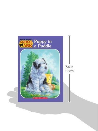 Puppy in a Puddle (Animal Ark Series #28)