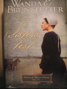 A Sister's Test (Sisters of Holmes County #2)