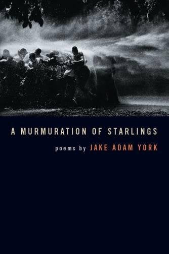 A Murmuration of Starlings (Crab Orchard Award Series in Poetry)