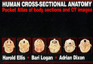 HUMAN SECTIONAL ANATOMY POCKET ATLAS (Hodder Arnold Publication)