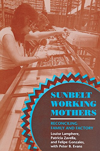 Sunbelt Working Mothers: Reconciling Family and Factory (The Anthropology of Contemporary Issues)