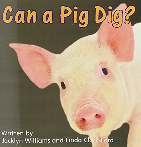 READY READERS, STAGE 0/1, BOOK 17, CAN A PIG DIG?, SINGLE COPY