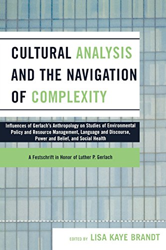 Cultural Analysis and the Navigation of Complexity