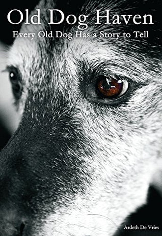 Old Dog Haven: Every Old Dog Has a Story to Tell