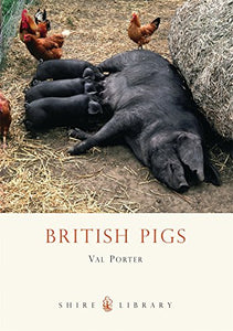 British Pigs (Shire Library)
