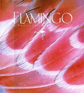 Flamingo: A Photographer's Odyssey