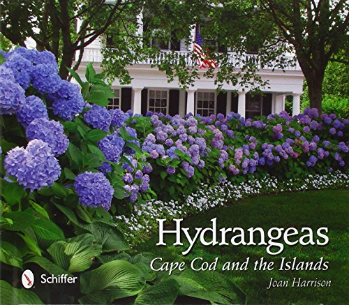 Hydrangeas: Cape Cod and the Islands