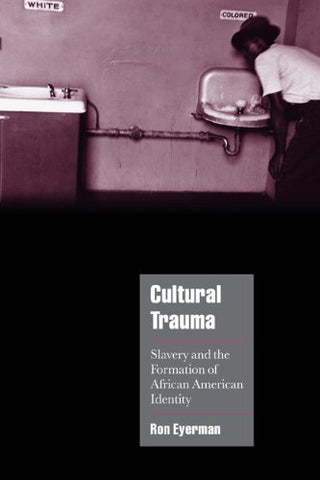 Cultural Trauma: Slavery and the Formation of African American Identity (Cambridge Cultural Social Studies)