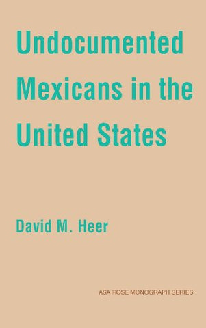 Undocumented Mexicans in the USA (American Sociological Association Rose Monographs)