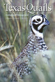 Texas Quails: Ecology and Management (Perspectives on South Texas, sponsored by Texas A&M University-Kingsville)
