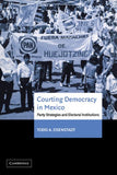 Courting Democracy in Mexico: Party Strategies and Electoral Institutions