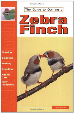 Guide to Owning a Zebra Finch