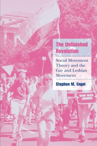 The Unfinished Revolution: Social Movement Theory and the Gay and Lesbian Movement (Cambridge Cultural Social Studies)