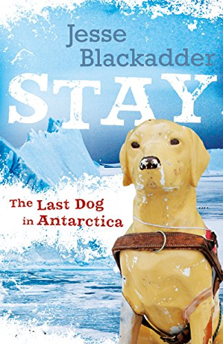 Stay: The Last Dog In Antarctica