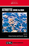 Astrocytes: Wiring the Brain (Frontiers in Neuroscience)