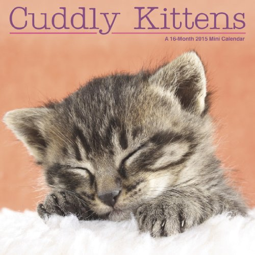Cuddly Kittens 2015 Mini 7 x 7 Calendar