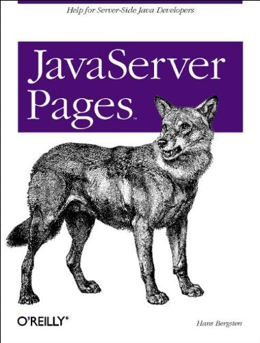 Java Server Pages (Java Series)