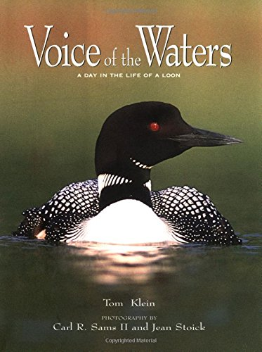 Voice of the Waters: A Day in the Life of a Loon